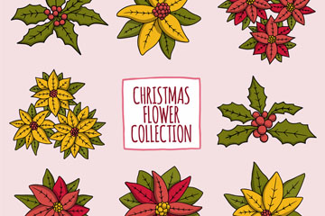 8款手绘圣诞节花卉矢量素材