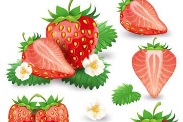 5款逼真新鲜草莓矢量素材