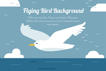 创意飞翔在海上的海鸥矢量素材