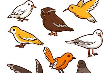 8款彩色鸟类设计矢量素材