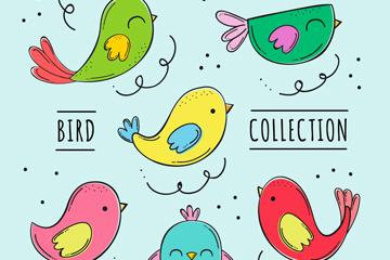 6款彩绘鸟类设计矢量素材