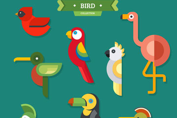 8款彩色鸟类侧影矢量素材
