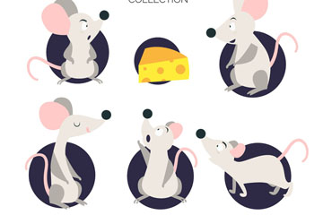 5款灰色老鼠设计矢量素材
