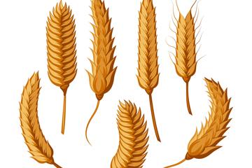 7款创意麦穗设计矢量图