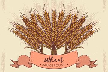 手绘麦束设计矢量素材