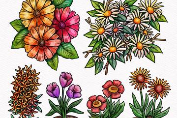 6款手绘春季花卉矢量素材