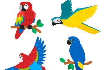 4款彩色热带鹦鹉设计矢量素材