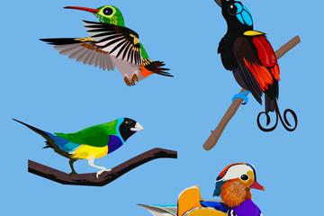 4款逼真鸟类设计开户送体验彩金的网站