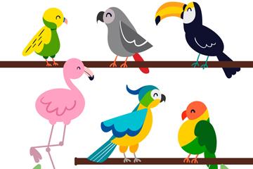 6只彩色树枝上的鸟开户送体验彩金的网站