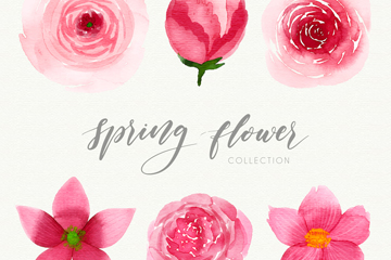 6款水彩绘春季粉色花卉矢量图
