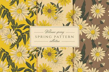 3款手绘复古春季菊花无缝背景矢量图