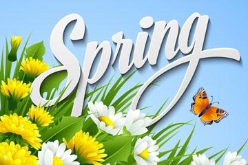 创意春季菊花和蝴蝶矢量素材
