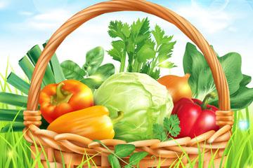 创意装满篮子的蔬菜矢量素材
