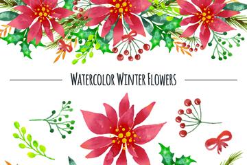 水彩绘冬季植物和花边矢量素材
