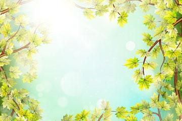 春季树梢和阳光框架矢量素材