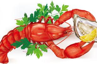 美味龙虾和牡蛎菜肴矢量素材