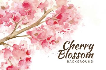 水彩绘盛开樱花矢量素材