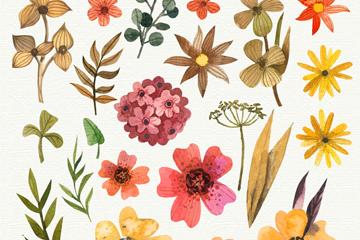 22款水彩绘花卉和叶子矢量图
