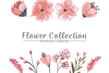 10款水彩绘粉色花卉矢量图