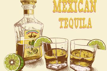 彩绘墨西哥龙舌兰酒矢量素材
