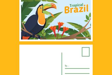 创意巴西巨嘴鸟明信片正反面矢量图