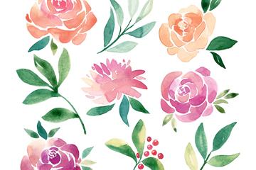 9款水彩绘花卉和叶子矢量图