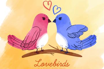 彩绘情人节树枝上的情侣鸟矢量图