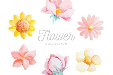 6款水彩绘花朵设计矢量素材