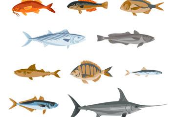 10款彩绘逼真鱼类设计矢量图