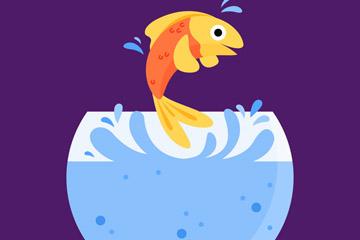 彩色跳跃的金鱼最新网络赌博网站