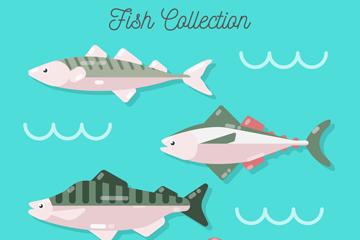 4款质感鱼类侧面设计矢量图