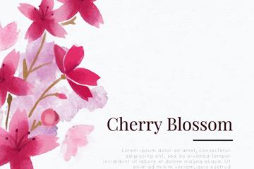 彩绘美丽樱花花枝矢量素材
