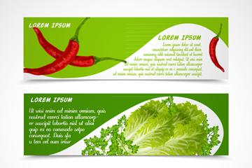 3款新鲜蔬菜banner最新网络赌博网站