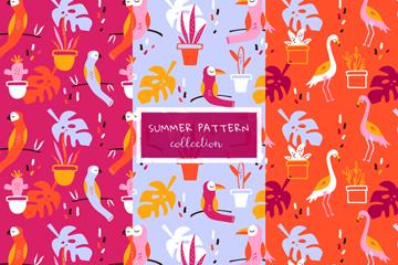 3款彩色夏季花卉和鸟无缝背景矢