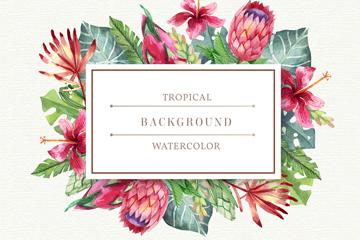 水彩绘热带花草框架设计矢量素材