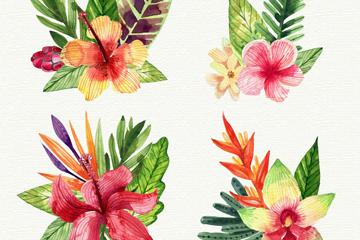 4款水彩绘热带花卉和叶子矢量图