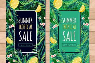 2款绿色棕榈树叶夏季促销banner