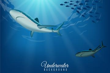 创意海底鱼群和鲨鱼矢量素材