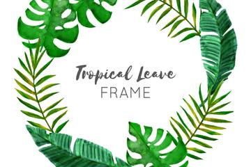 绿色热带树叶框架矢量素材