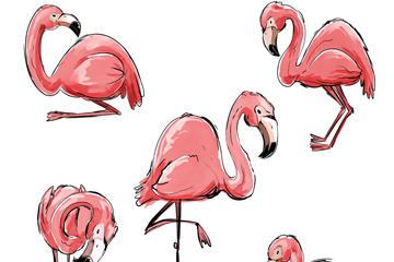 5款手绘粉色火烈鸟矢量图
