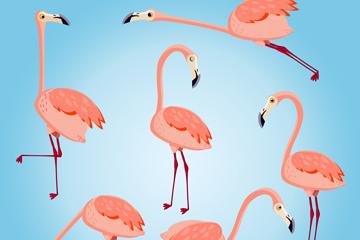 6款粉色火烈鸟设计矢量素材