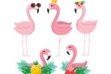 5款时尚粉色火烈鸟矢量素材