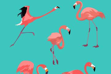 5款美丽火烈鸟设计矢量素材