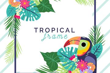 创意热带花卉和巨嘴鸟框架矢量图
