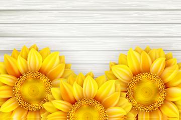 美丽向日葵花矢量素材