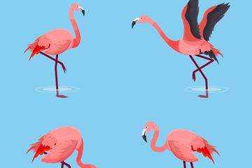 4款动感粉色火烈鸟矢量素材