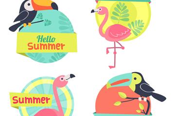 4款彩色夏季鸟类标签矢量素材