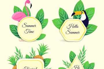 4款创意夏季花鸟标签矢量素材