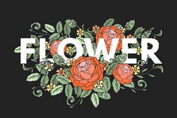 彩�L玫瑰花�b�花卉��g字矢量素材