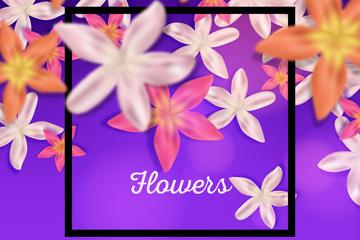 彩色�u蛋花花朵框架矢量素材